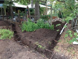Trenches were dug to lay pvc pipe from the gutters to the rainwater tank.